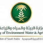 وظائف وزارة البيئة المياه و الزراعة